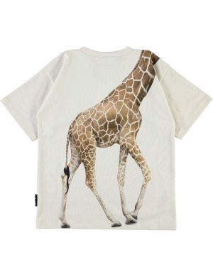 Molo Rillo T-shirt White Star Giraffe