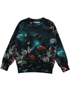 Molo Romeo Sweater Deep Sea