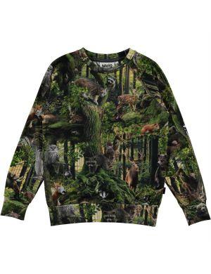 Molo Romeo Sweater Forest Life