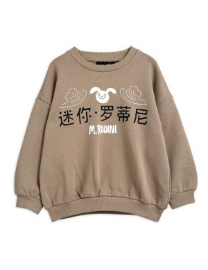 Mini Rodini Rabbit sp Sweatshirt Lightbrown