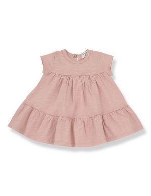 1+ in the family Altamura Dress Rose