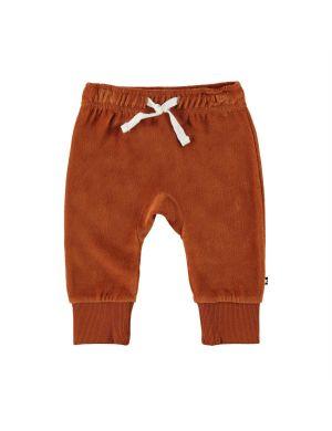 Molo Sigo Baby Pants Iron