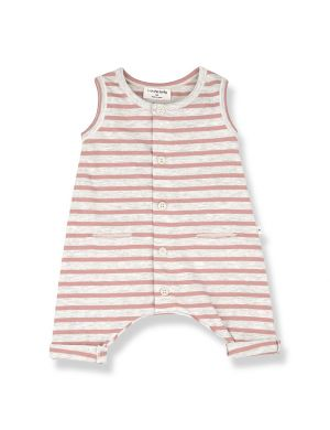 1+ in the family Monaco Romper Rose
