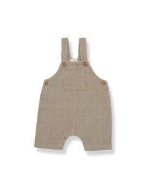 1+ in the family Nacho Dungaree Khaki