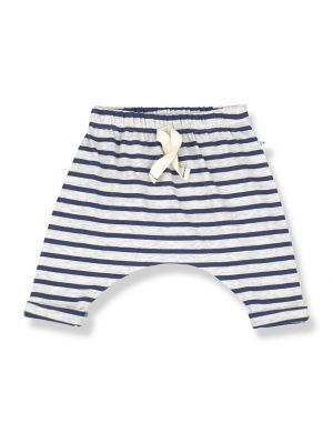 1+ in the family Sammy Pants Azzurro